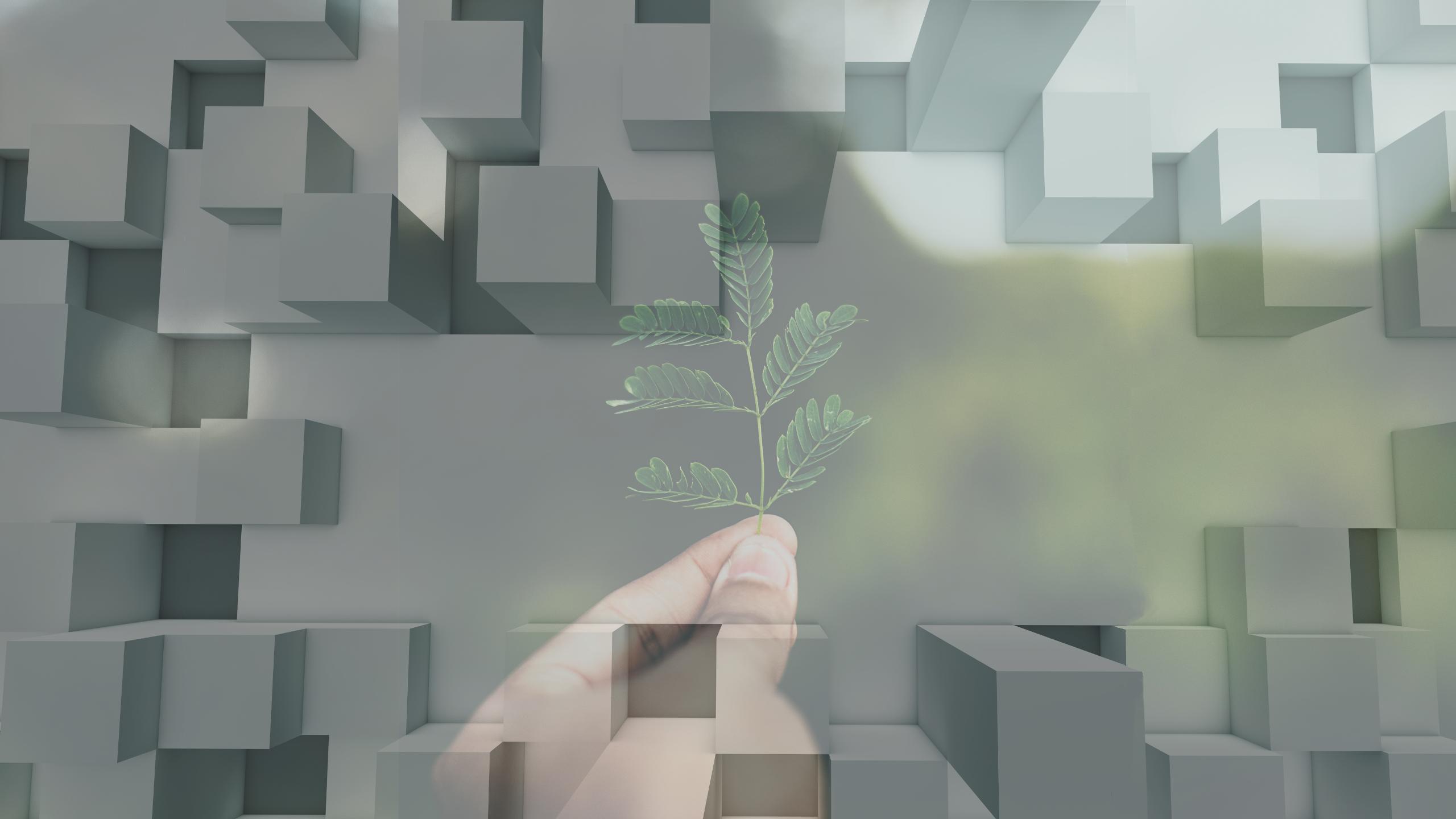 Kompetenzfeld ESG Nachhaltigkeit